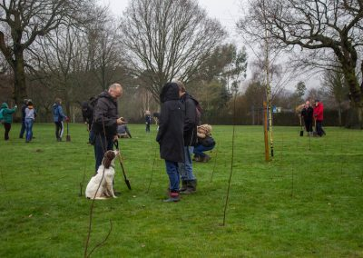 Tree planting in Kings Heath Park Jan 2019-16