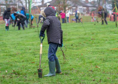 Tree planting in Kings Heath Park Jan 2019-4