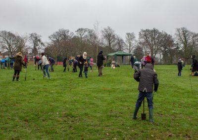 Tree planting in Kings Heath Park Jan 2019-5